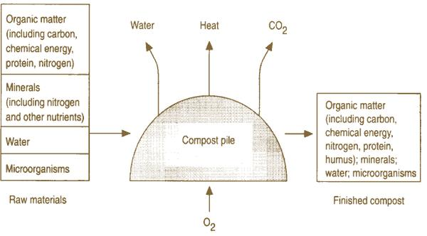 A diagram of how raw materials become compost
