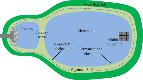 Overhead illustration of pond design elements