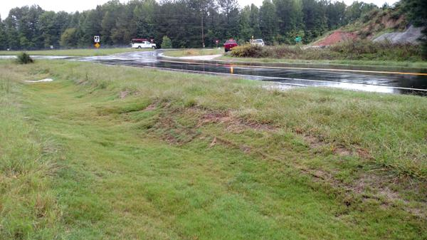 Color photo of grass swale vegetation beside asphalt road