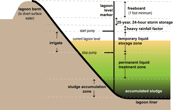 Delineation of sludge zone and liquid layer above.