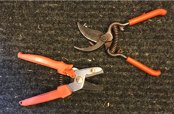 Anvil pruners and bypass pruners