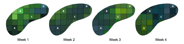 Four figures with differing colors represent lake water quality