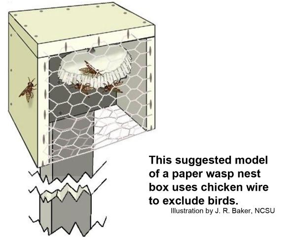 Paper wasp nest boxe