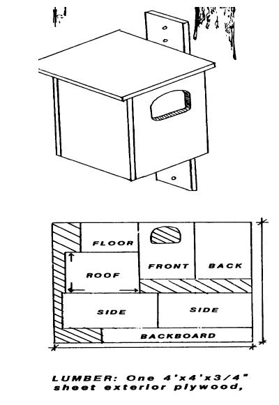 Figure 1. Owl box construction.