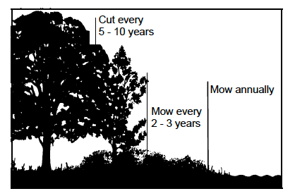Figure 1. Schedule for maintaining forest / field edge.
