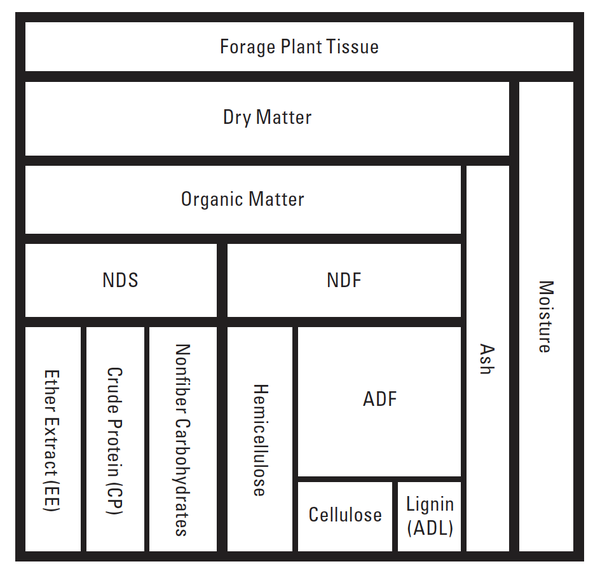 Schematic of lab analysis and chemical constituents of forages