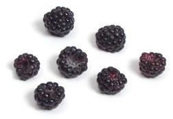 Photo of black raspberries.