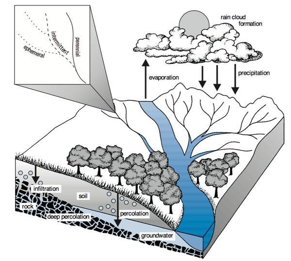 Figure 1. Hydrologic cycle.