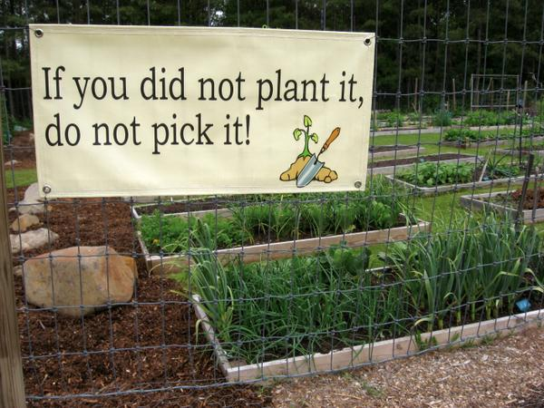 photo of a sign saying, If you did not plant it, do not pick it.