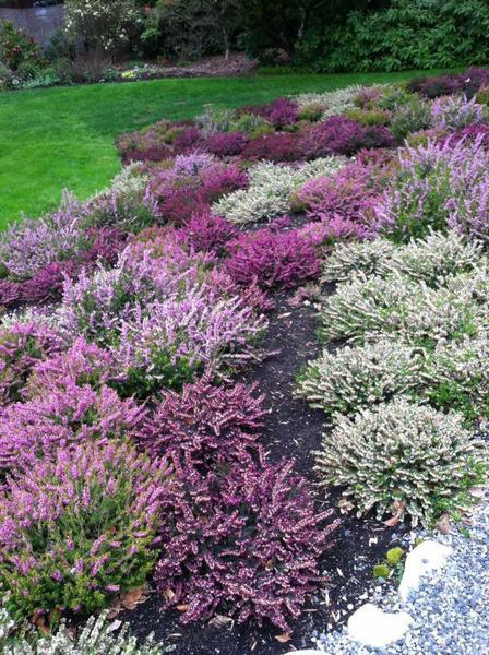 North Carolina Landscaping Designs
