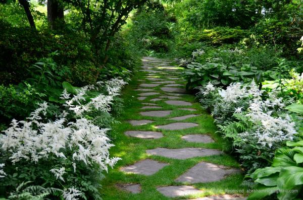 The Rhythm Of Using White Astilbe And Hostas Repeatedly Draws You Into The  Garden And Down This Path.