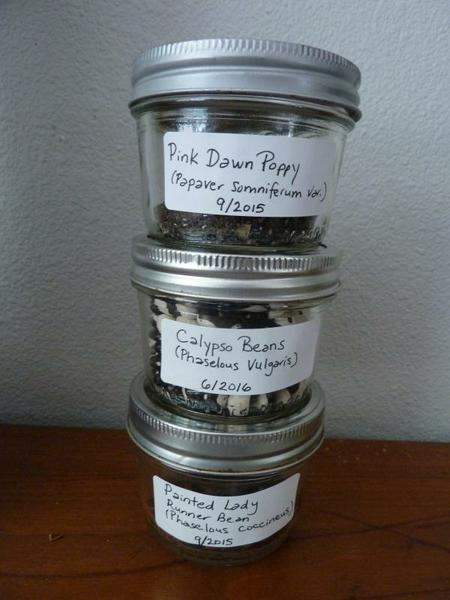 seed saving glass jars