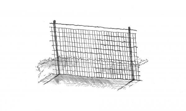 raccoon fence
