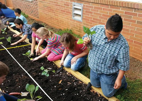 Students work in a raised-bed planter.