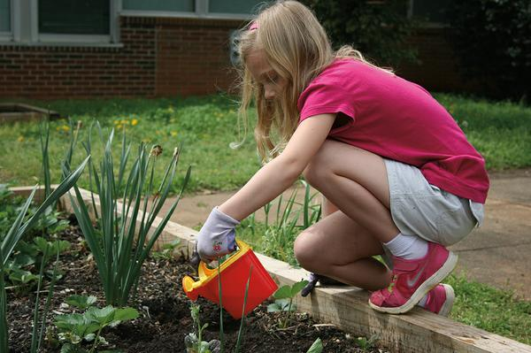 A you girl uses a watering can to water plants.