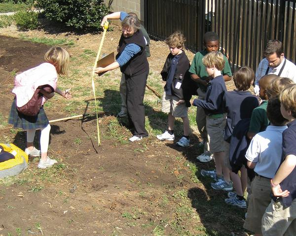 Students learn about gardening in a school garden.