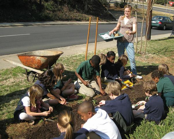 A teacher and students work in a school garden.