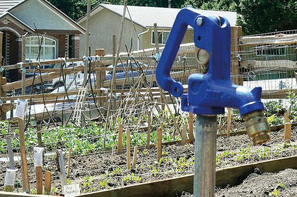 A photo of a water spigot in a community garden.