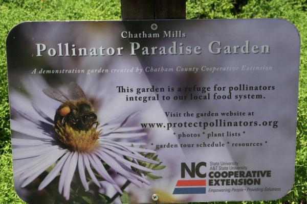 12 Native Plants NC State Extension Publications