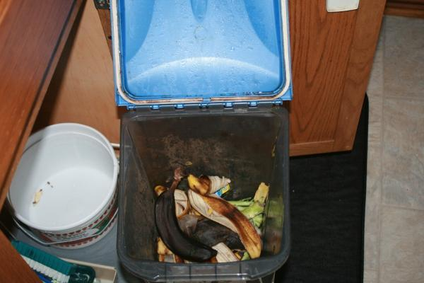 kitchen scraps under counter