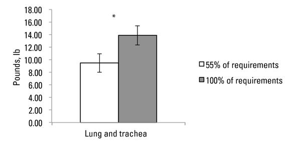 Fig 2. Lung plus trachea wghts of steers born to first-calf heif