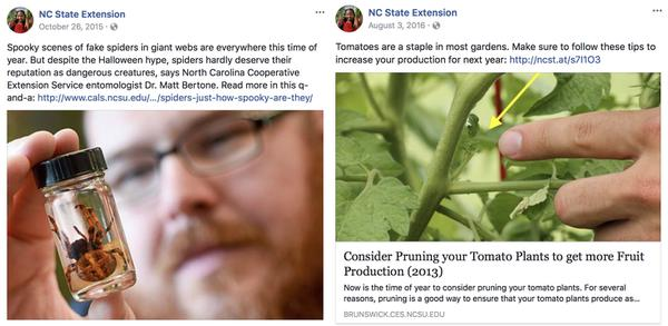 Two posts from the NC State Extension Facebook page