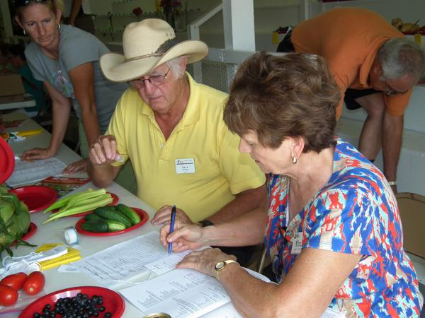Photo of vegetable judging at the Burke County fair