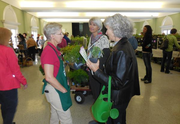Photo of volunteers managing a plant sale in Alamance County