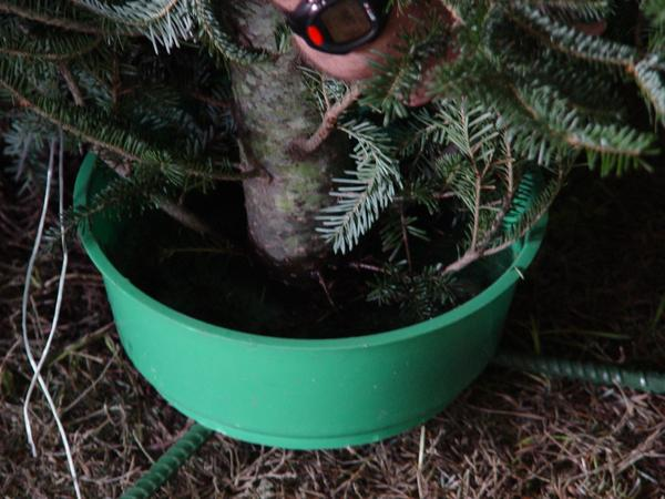 Christmas tree stand with a large green plastic water bowl