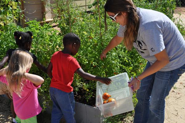 Thumbnail image for Snacking and Cooking with Warm-Season Produce from Childcare Production Gardens