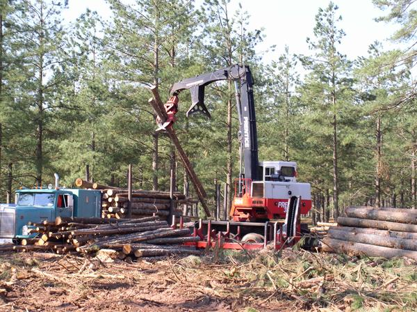 Photo of logging equipment.