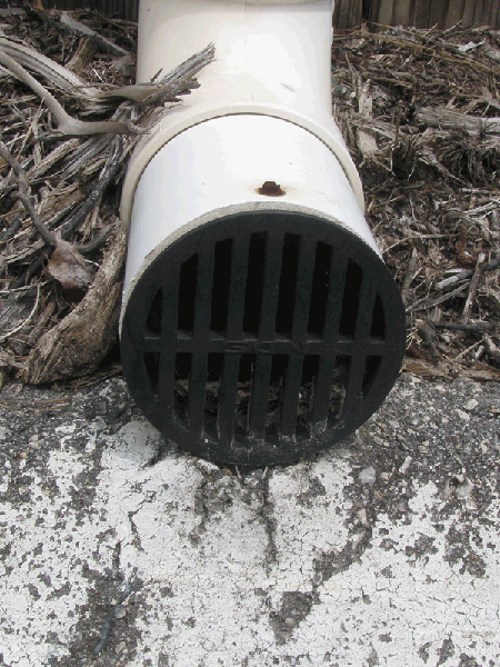 End of downspout with screen with vertical slats