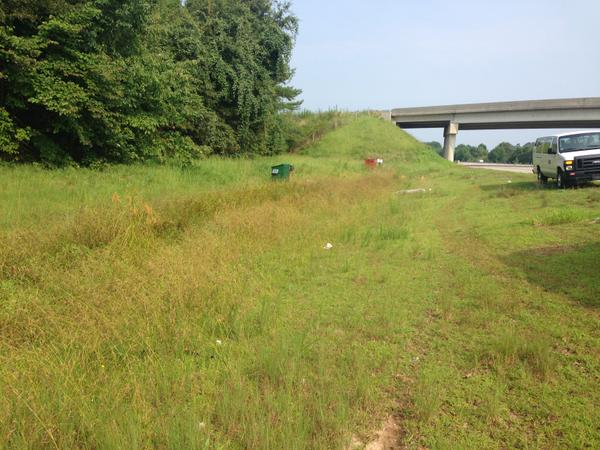 Color photo of grassy swale next to highway with overpass