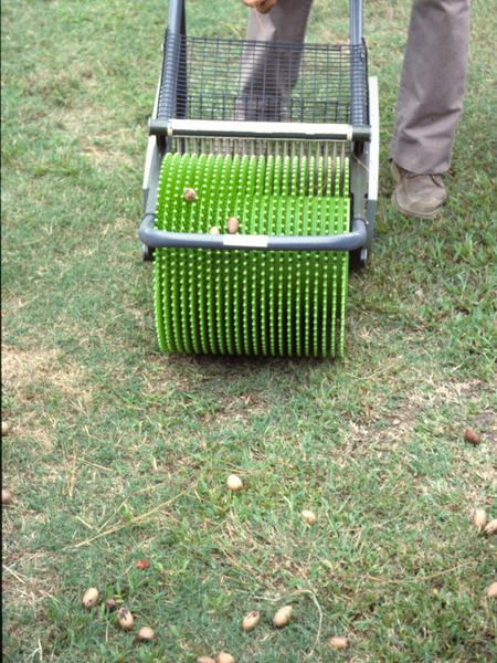 Figure 14. Example of a hand-pushed pecan harvester.