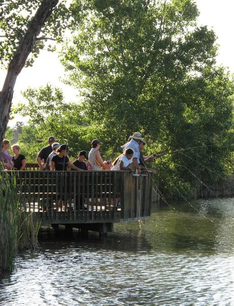 A group of people fish from a wooden deck.
