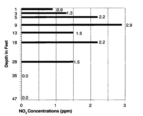 Figure 2. Groundwater nitrate concentration in an old cultivated