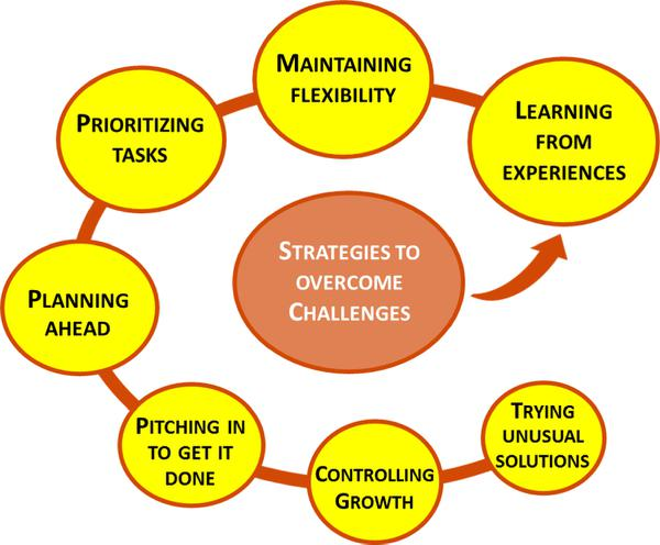 Figure 3. Strategies to overcome challenges.