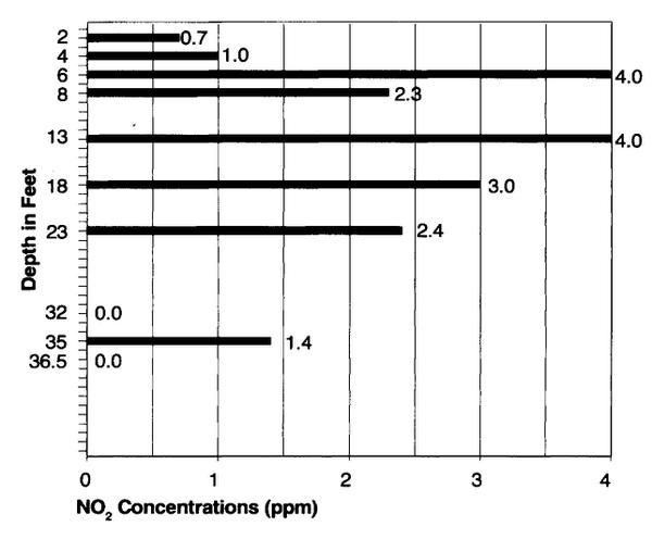 Figure 3. Groundwater nitrate concentration in an old cultivated