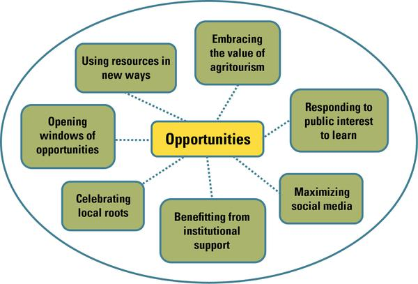 Figure 4. Opportunities for women in agritourism.