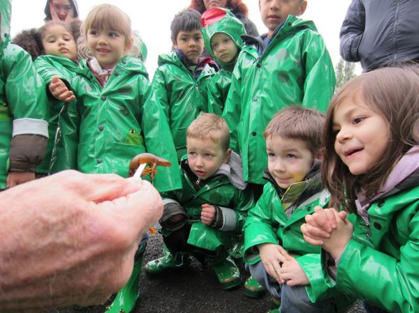 Young children dressed in rain jackets looking at a newt.