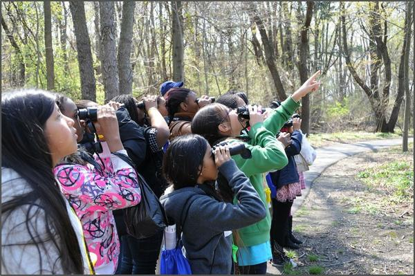 A group of children with binoculars watching birds.