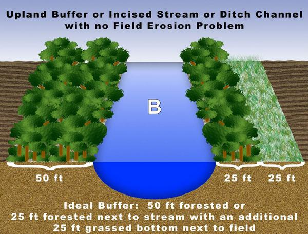 Figure B. Upland buffer or incised stream or ditch channel with