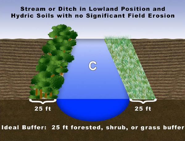 Figure C. Stream or ditch in lowland position and hydric soils w