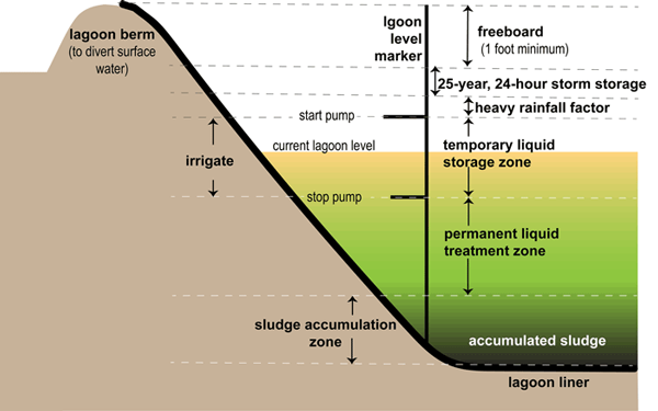 Color graphic of the lagoon design and components