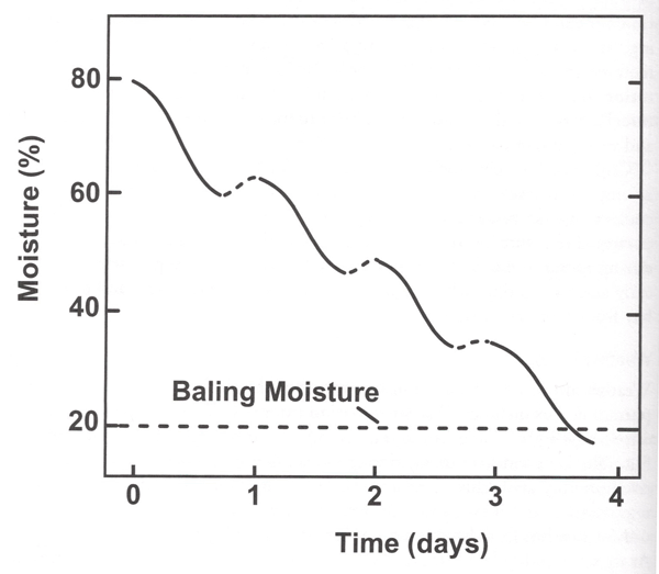 Graph of typical moisture loss patter in forages