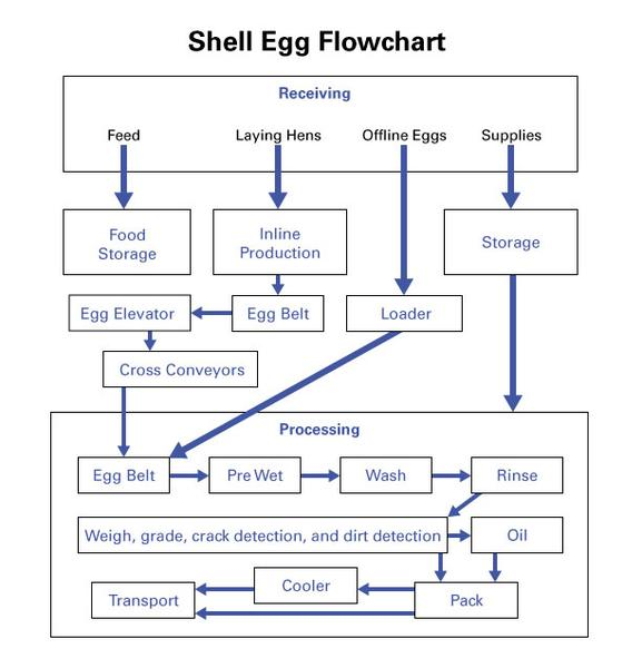 Thumbnail image for Designing a Hazard Analysis and Critical Control Point (HACCP) Plan for Shell Eggs
