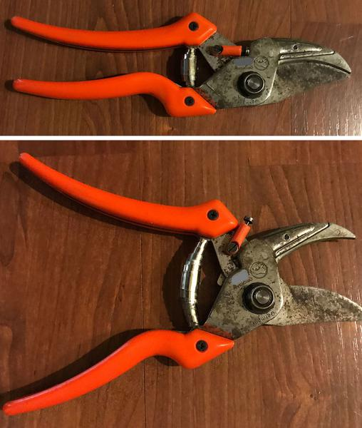 Open pair of curved-bladed anvil pruners