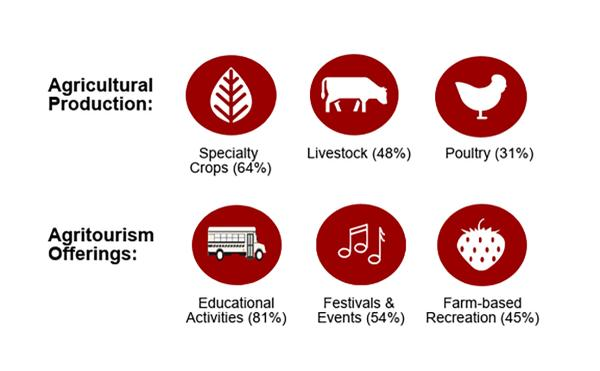 Figure 2. Most common agricultural products and agritourism offe