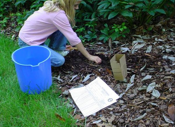 Taking a garden soil sample using a bucket and sample box
