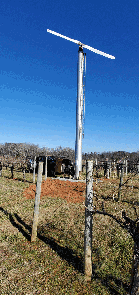 A permanently installed wind machine in a vineyard